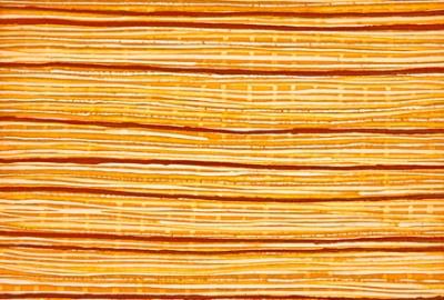margaret mara, mapoon