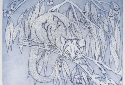 Hedley Karyuka Porpuraaw Artist